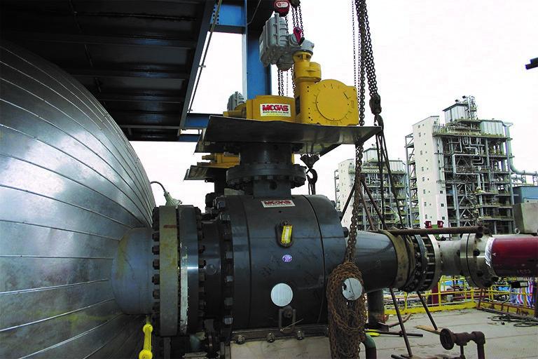 配备独特进口和出口尺寸的 MOGAS 反应釜阀门。